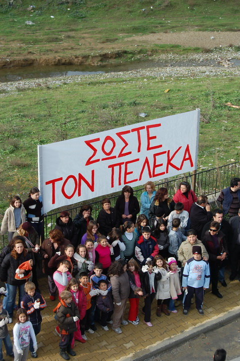 You are browsing images from the article: Πρωτοβουλία για τον Πέλεκα > 30-11-2008